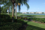 Bonita Springs, Florida Spring Run At The Brooks Listings