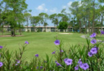 Naples Florida The Glades Listings